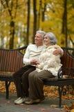 Couples aînés se reposant sur le banc Photo stock