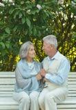 Couples aînés se reposant sur le banc Photographie stock libre de droits