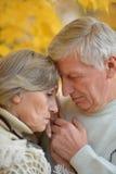 Couples aînés tristes Photographie stock libre de droits