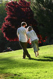Couples affectueux Photographie stock libre de droits