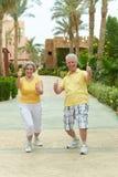 Couples affectueux d'aîné Image stock