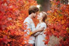 Couples affectueux en parc d'automne photo stock