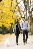 Couples affectueux en stationnement d'automne Photographie stock