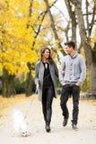 Couples affectueux en stationnement d'automne Image stock