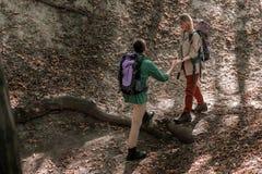 Couples affectueux gais marchant dans les bois Photo stock