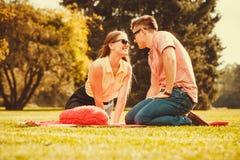 Couples affectueux gais sur le pique-nique Photographie stock libre de droits