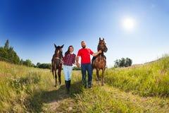 Couples affectueux marchant avec des chevaux au jour ensoleillé Photo libre de droits