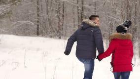 Couples affectueux marchant en parc et sourire d'hiver banque de vidéos