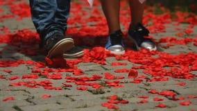Couples affectueux marchant lentement le long de la route avec des pétales de rose les jetant avec des pieds banque de vidéos