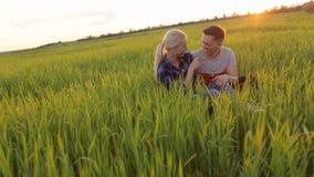 Couples affectueux se reposant dans un domaine de blé au coucher du soleil banque de vidéos