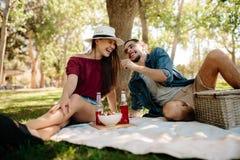 Couples appréciant au pique-nique Images libres de droits