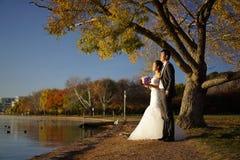 Couples asiatiques de mariage dans des photos de nature Image stock