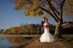 Couples asiatiques de mariage dans des photos de nature Photographie stock