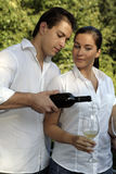 Couples attrayants ayant des glas de vin Photographie stock