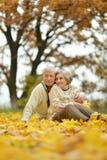 Couples ayant l'amusement dans le stationnement Photographie stock libre de droits