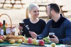 Couples ayant le pique-nique à la campagne Photos stock