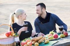 Couples ayant le pique-nique à la campagne Image libre de droits
