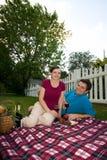 Couples ayant le pique-nique - verticale Images stock