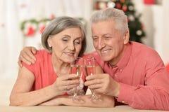 Couples célébrant la nouvelle année Images libres de droits