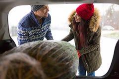 Couples chargeant l'arbre de Noël fraîchement réduit dans le dos de leur voiture Photos libres de droits