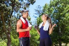 Couples convenables en parc Photo stock