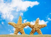 Couples d'étoiles de mer Photos libres de droits