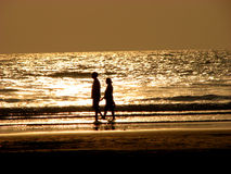 Couples d'or Photo libre de droits