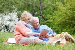 Couples d'aîné de pique-nique Photographie stock