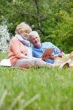 Couples d'aîné de pique-nique Images libres de droits