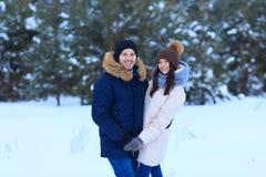 Couples d'amour marchant dans la forêt d'hiver Image stock