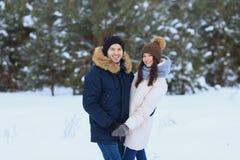 Couples d'amour marchant dans la forêt d'hiver Photos stock