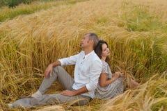 Couples d'amour d'Unappy se reposant sur l'herbe dans un domaine de blé L'homme et la femme se sont disputés Photos libres de droits