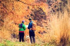 Couples d'instagram de vintage augmentant dans la forêt d'automne Photographie stock libre de droits