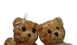 Couples d'isolement d'ours de nounours Photos libres de droits