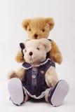Couples d'ours de nounours Photos stock