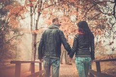 Couples d'une cinquantaine d'années dehors le jour d'automne Image stock