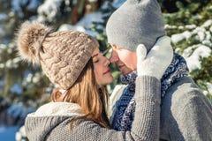 Couples dans des étreintes d'amour dans la forêt d'hiver Images libres de droits