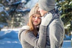 Couples dans des étreintes d'amour dans la forêt d'hiver Photo libre de droits