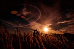Couples dans l'amour au coucher du soleil Images libres de droits