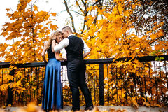 Couples dans l'amour Automne, extérieur Photographie stock