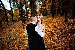 Couples dans l'amour Automne, extérieur Photo libre de droits