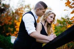 Couples dans l'amour Automne, extérieur Image stock