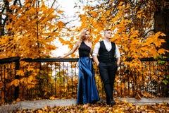 Couples dans l'amour Automne, extérieur Image libre de droits