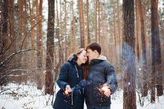 Couples dans l'amour ayant l'amusement en quelques vacances d'hiver Image libre de droits