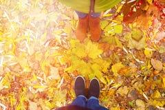 Couples dans l'amour en parc en automne Photo libre de droits