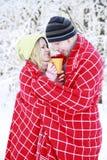 Couples dans l'amour en stationnement en hiver Photographie stock
