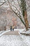 Couples dans l'amour marchant dans la neige Photo libre de droits