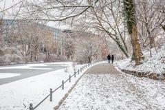 Couples dans l'amour marchant dans la neige Photos stock