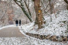 Couples dans l'amour marchant dans la neige Photographie stock