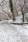 Couples dans l'amour marchant dans la neige Images stock